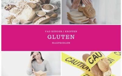 Vad händer i kroppen när du äter gluten?